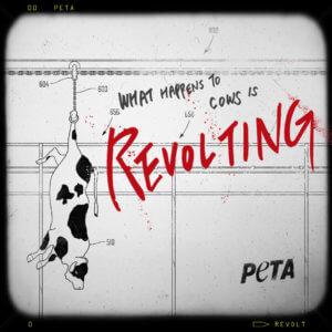 PETA Revolt! anti-dairy social images