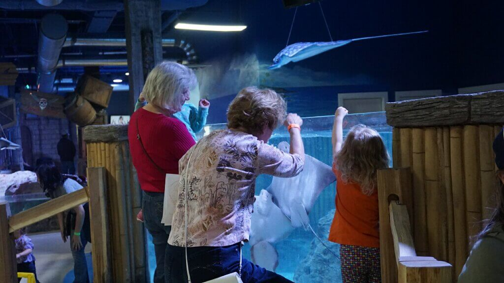 stay away from SeaQuest aquariums here's why