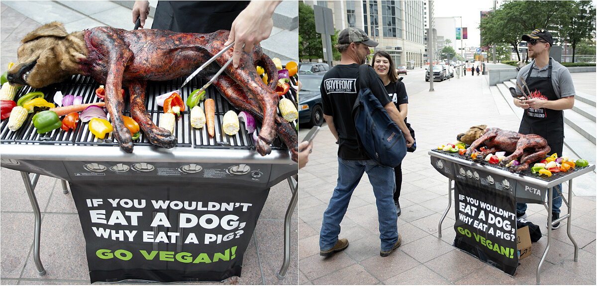 best peta protest photos 2019: man grills dog at barbecue