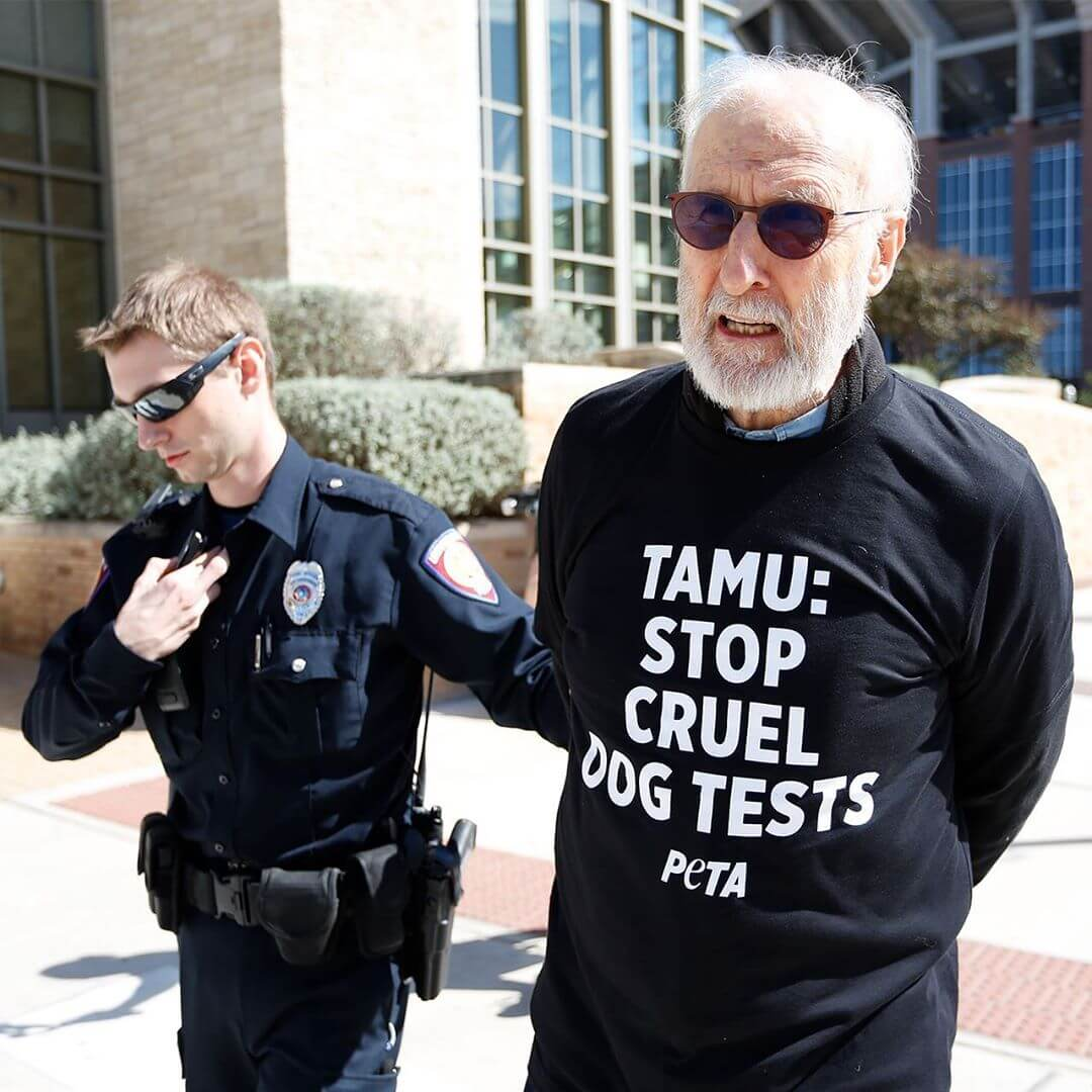 james cromwell arrested texas a&m dog lab peta protest 2019