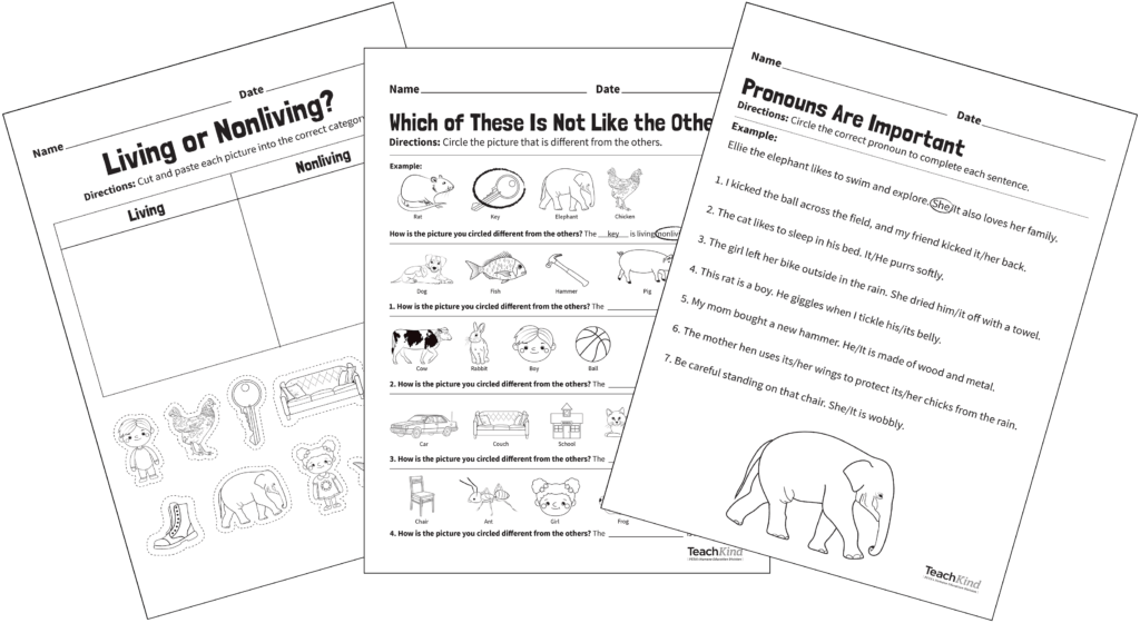 A class lesson worksheet about living or nonliving things or animals, and pronouns