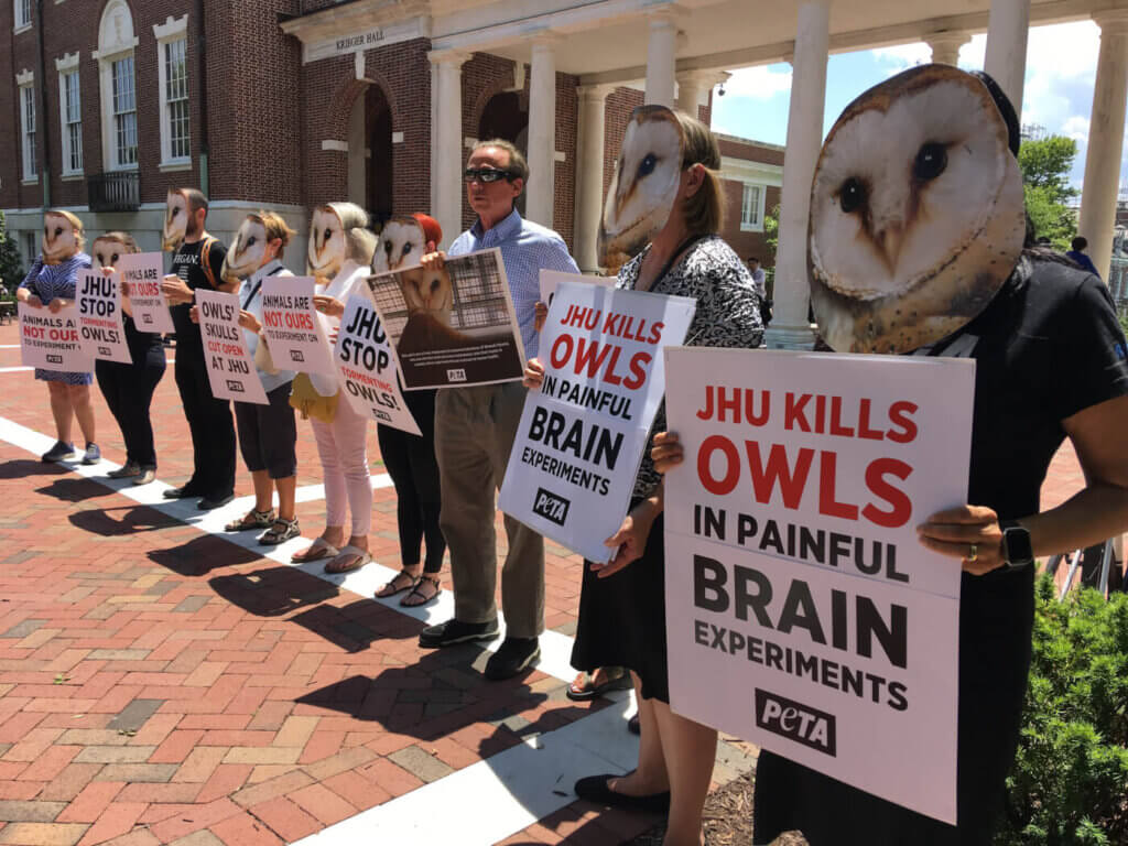 People Protesting Shreesh Mysore's Experiments on Owls