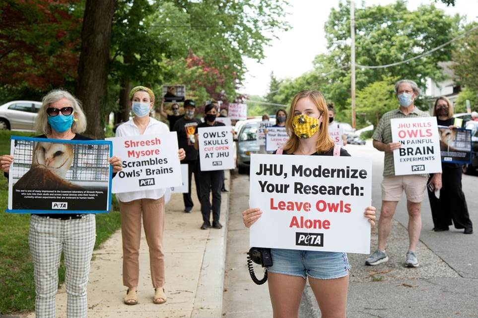 Protesters Protest Johns Hopkins University Owl Experiments