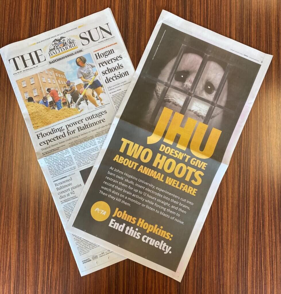 Johns Hopkins University Ad in Baltimore Sun