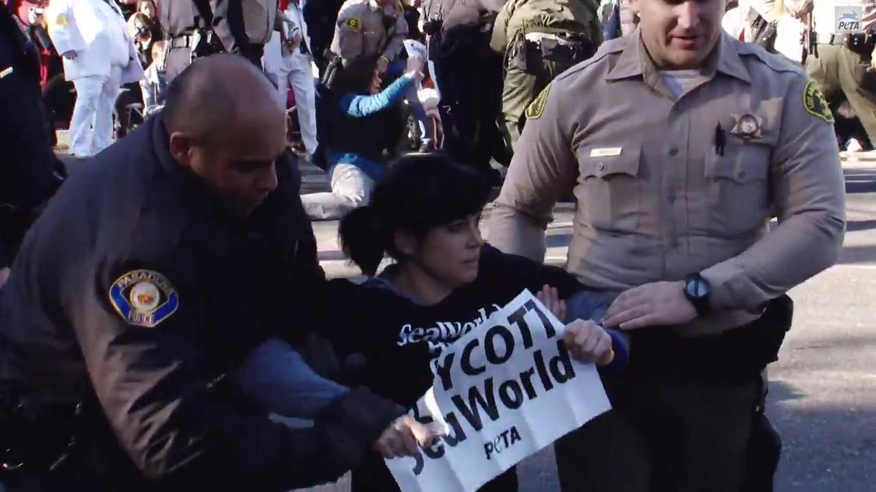 Rose Bowl Seaworld Protest
